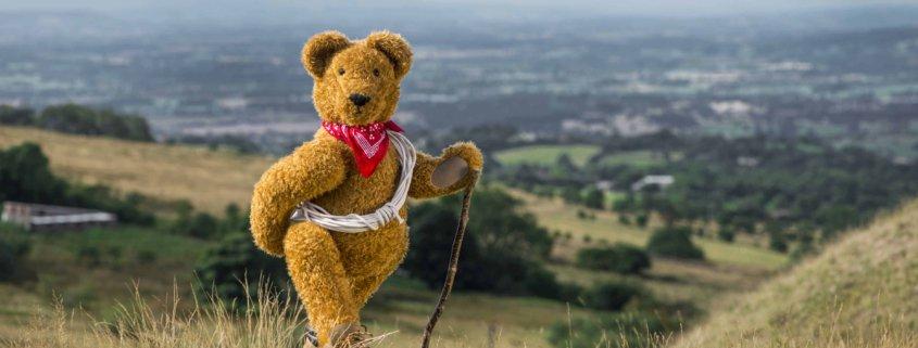 Teddy Bear Adventure Walk