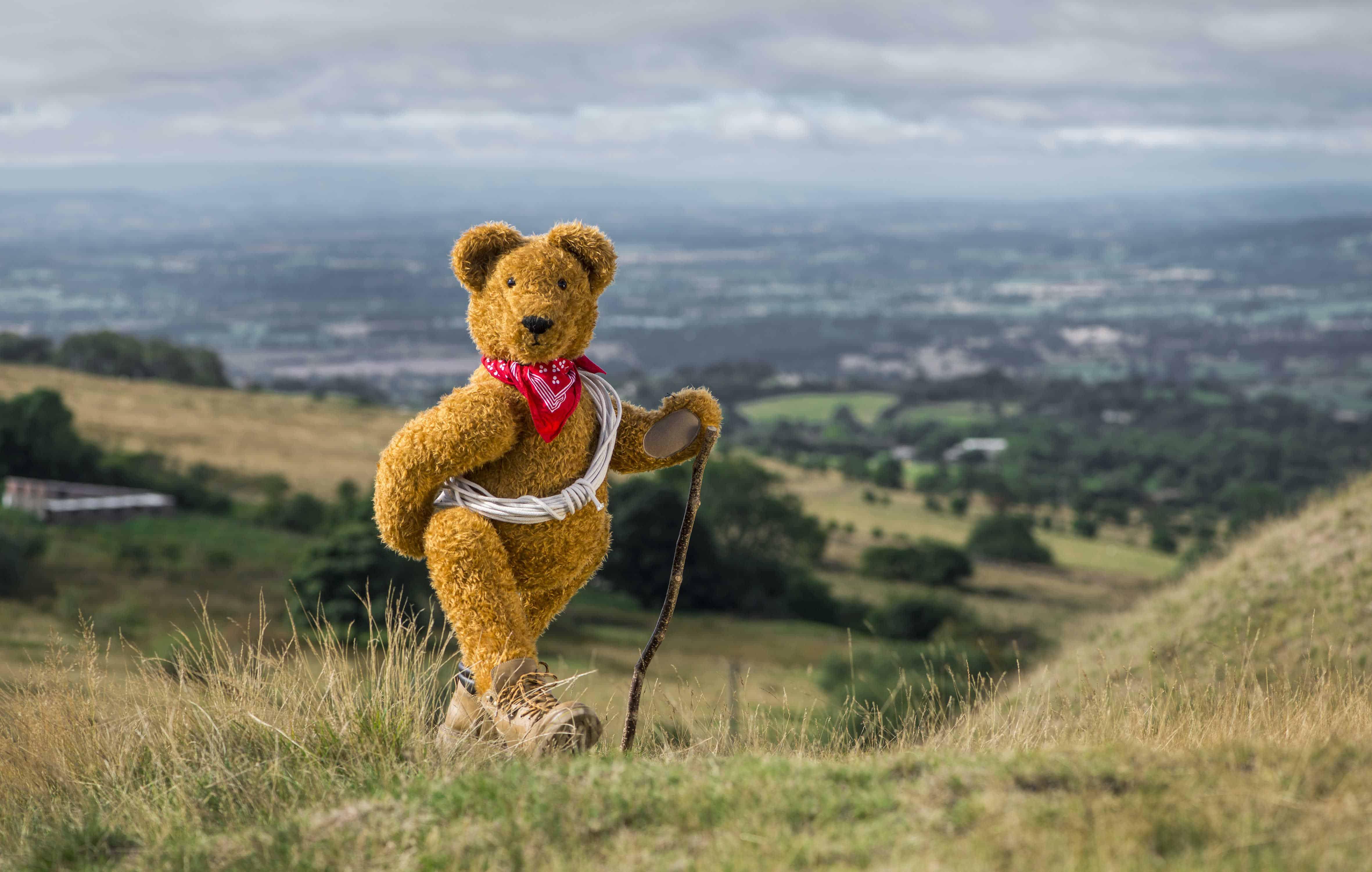 Teddy Bear Adventure Walk 2015