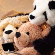 Famous Teddy Bear Brands