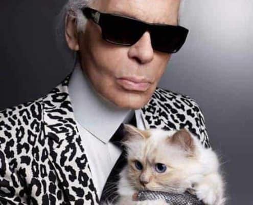 Coupette Karl Lagerfeld